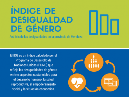 Análisis de las desigualdades en la provincia de Mendoza: el Índice de Desigualdad de Género