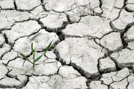 Propuesta para la introducción del Cambio Climático en Estudios de Impacto Ambiental y Social de proyectos agrícolas