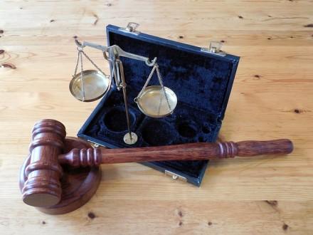 Garantías constitucionales del Proceso Penal: su aplicación en el procedimiento administrativo sancionador.