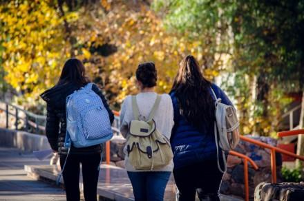 Trayectorias académicas en la universidad pública. Un análisis de caso