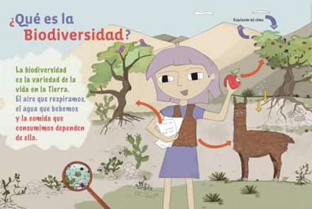 La conservación de la biodiversidad como eje de programas de Educación Ambiental