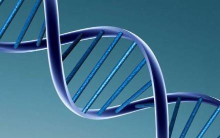 Cáncer de colon: desarrollo e implementación de estudios moleculares para diagnóstico en Mendoza