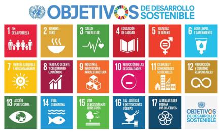 Importancia de la evaluación de aportes de organizaciones al desarrollo sostenible