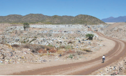 Reciclaje de residuos en Mendoza: problemática y oportunidades